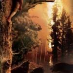 El Hobbit nuevo póster.