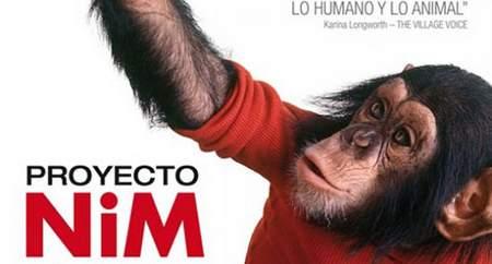 Imagen de 'Proyecto Nim'.