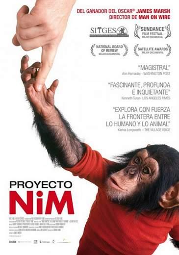 proyecto-nim-trailer-cartel