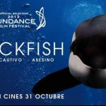 Crítica de Blackfish. Un documental imprescindible
