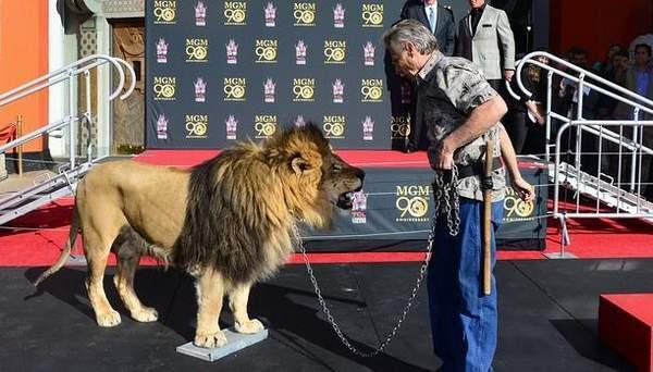 El León de la Metro Goldwyn Mayer