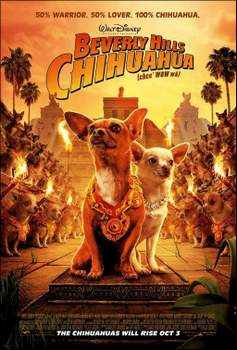 Un_chihuahua_en_Beverly_Hills-820724918-large