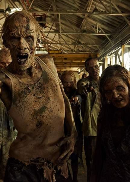 Quinta temporada de The Walking dead, sinopsis