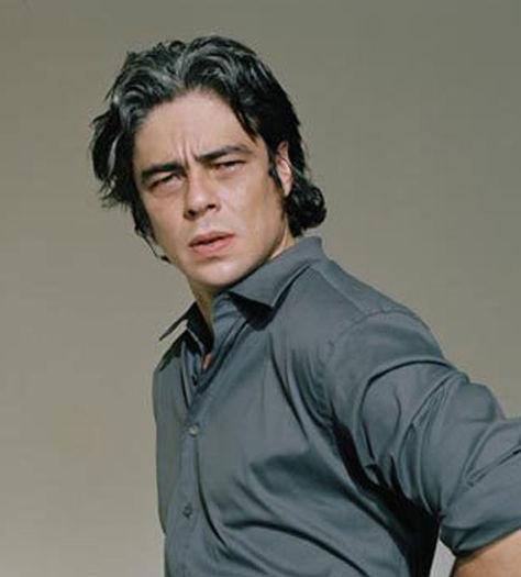 Benicio del Toro premio Donosti
