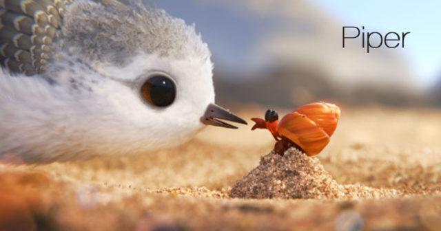Piper, el mejor corto de Pixar